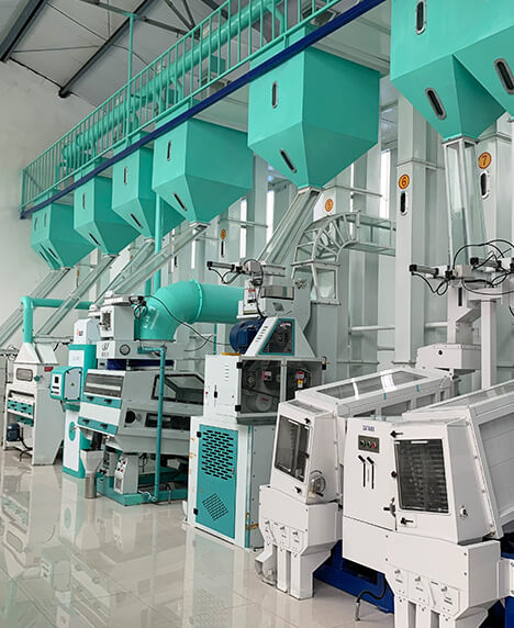 Shenyang First Jia Yu grain and oil comprehensive processing plant 100T production line