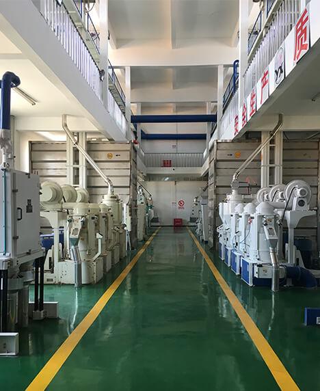 Fushun Central grain depot 2x100T Rice production line